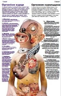 Организм курильщика Скачать (pdf)